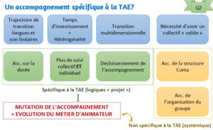 Illustration: Un accompagnement spécifique à la TAE ?
